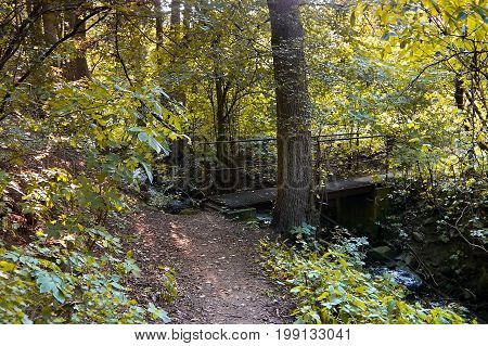 Forest path with small bridge over Dubina creek in Czech central mountains in sommer evening