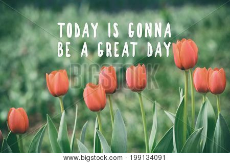 Inspirational And Motivational Quotes - Today Is Gonna Be A Great Day. Retro Styled, Blurry Backgrou
