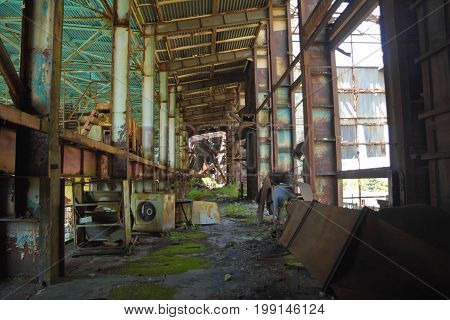 Abandoned destroyed by war and owergrown factory