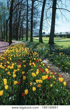 BELGIUM BRUSSELS - Floralia International Flower Exhibition around the castle Groot-Bijgaarden - Grand Bigard
