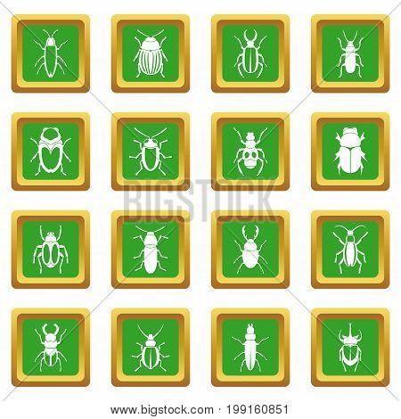 Bugs icons set in green color isolated vector illustration for web and any design