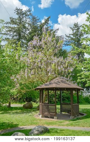 Snug cozy gazebo under blossoming trees on sunny summer day. Wooden gazebo in a garden on blue sky background