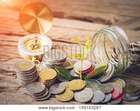 Closeup baby tree with coins in glass jar on old wooden background. Business financce and saving money concpt.