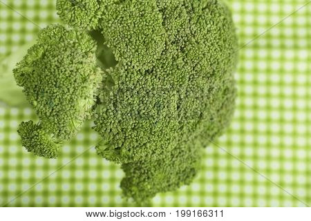 Green fresh broccoli on gingham textile background
