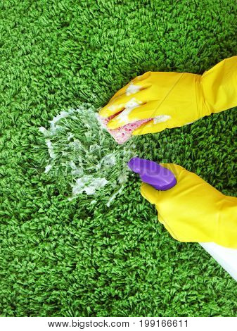 Hands of human in rubber gloves cleaning carpet with sponge and detergent