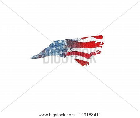 United States Of America. Watercolor texture of American flag. North Carolina.