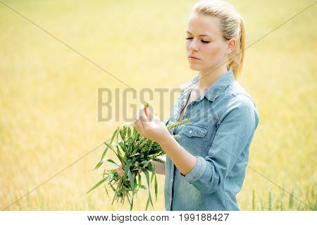 Pretty young girl holds ears of wheat at the yellow field of wheat