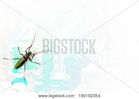 Conceptual background silhouette of computer motherboard and longhorn beetle insect symbolizing computer virus with copy space for your text