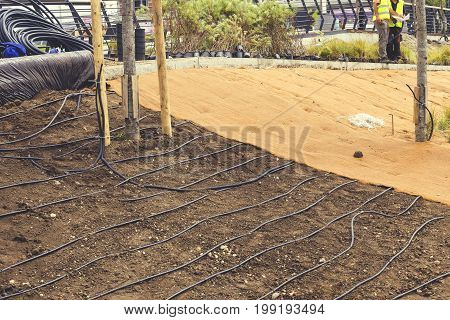 Subsurface Drip Irrigation For Plants