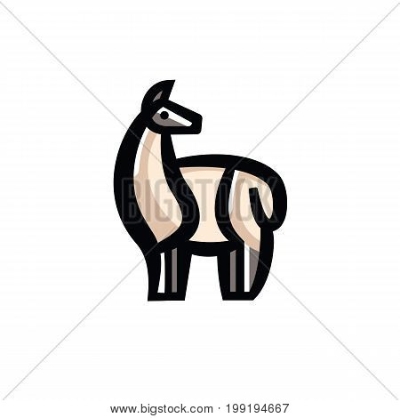 Color stylized drawing of standing cute guanaco - for icon or sign template