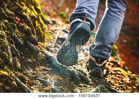 Hikers boots on forest trail. Autumn hiking. Close-up of male walking in trekking shoes on the background of leaves and trees. Travel Sports Lifestyle Concept.