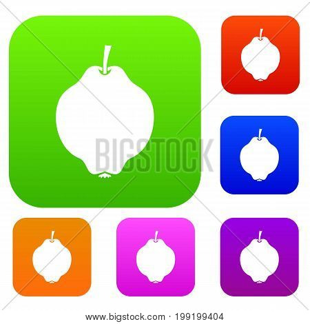 Quince fruit set icon in different colors isolated vector illustration. Premium collection