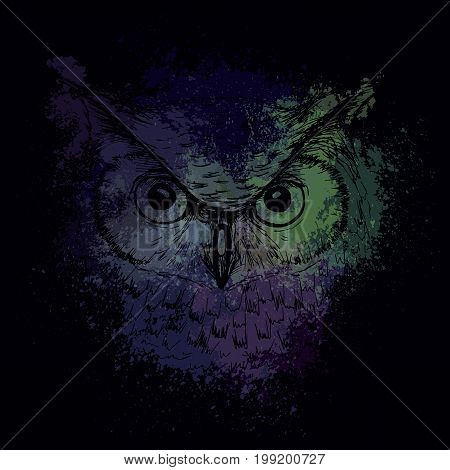 Head of an owl at night on a background of bright colored spots a design for a T-shirt
