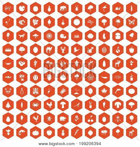 100 live nature icons set in orange hexagon isolated vector illustration