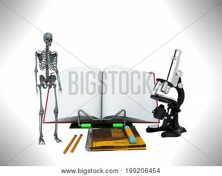 Concepts Of School And Education Biology 3D Render On Gray Background
