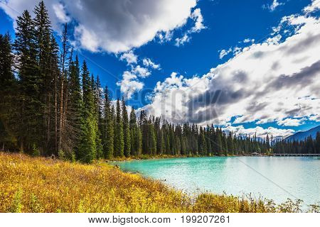 Lake in the Rocky Mountains. The smooth turquoise water among the yellowed autumn forest. The concept of eco-tourism and active recreation