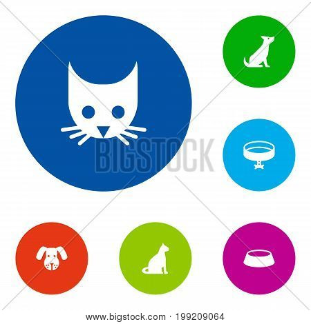 Collection Of Neckband , Sitting, Cat Elements.  Set Of 6 Animals Icons Set.