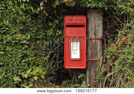Elizabeth II red post office mail box set into hedgerow.