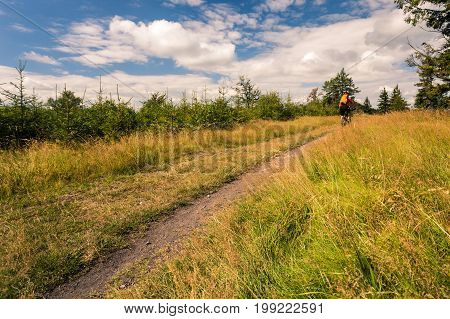 Mountain biker riding on bike in summer inspirational mountains landscape. Man cycling MTB on enduro trail path. Sport fitness motivation and inspiration. Rider mountain biking in summer woods.