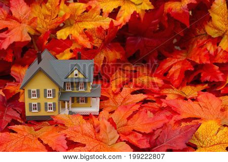 Your home in the fall season Some fall leaves and yellow and gray house with copy-space for your message