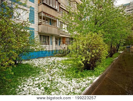 Unexpected snow in the spring in Moscow district Teply Stan