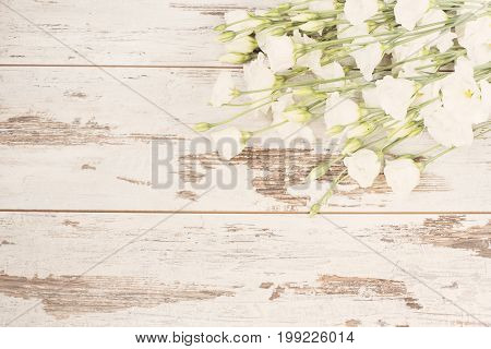 Stunning fresh bouquet of white flowers on light rustic wooden background. Copy space floral frame. Wedding gift card valentine's day or mothers day background