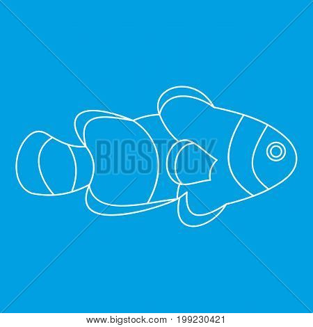 Fish clown icon blue outline style isolated vector illustration. Thin line sign