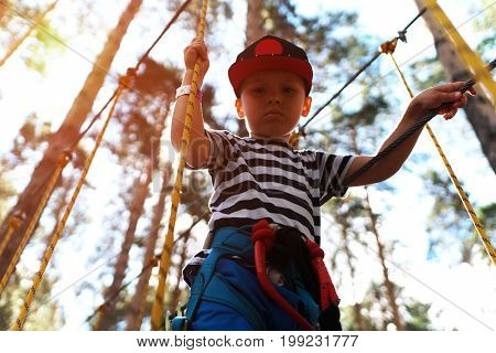 Portrait of little boy climbing in extreme rope park. Child equipped with safety straps on hinged trail in adventure park.