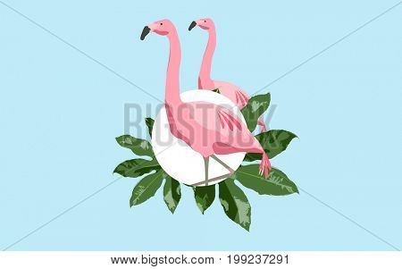 fauna and birds concept - pink flamingos over blue background with green leaves