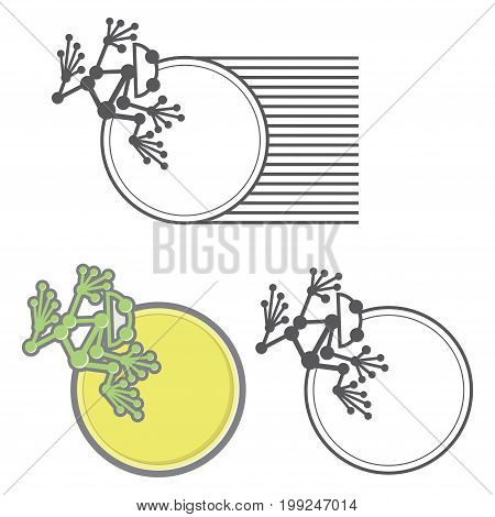 An illustration consisting of three images in the form of a frog sitting on a coin