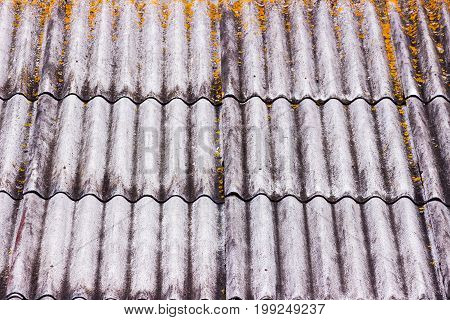 Wooden Roof Tiles . Old Roof. Textured Background