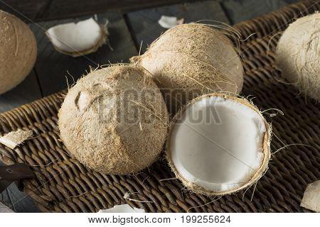 Raw Organic White Coconuts