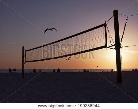 Seagulls flying above a volleyball net on Bradenton Beach, Florida at sundown