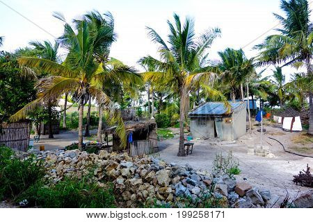 Traditional village near the ocean with palm tree houses in Mozambique, Africa