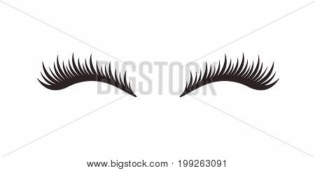 Eyelashes on white background, vector illustration. Eyelash extension. A beautiful make-up. Thick cilia.