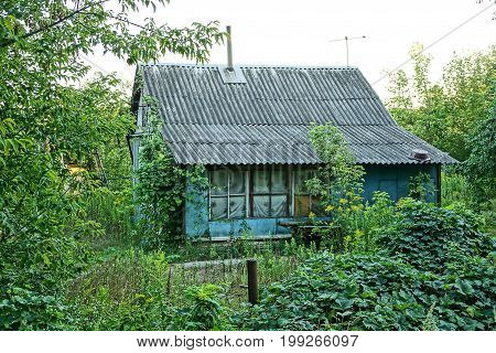 Old house with slate roof in a green garden
