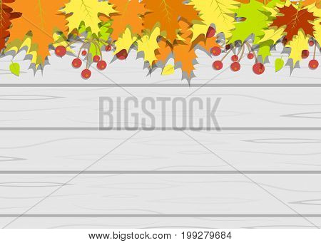 Wooden texture leaves vector ancient, brawn, closeup, style