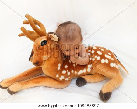 4 months old baby boy playing with soft toy dear and chick