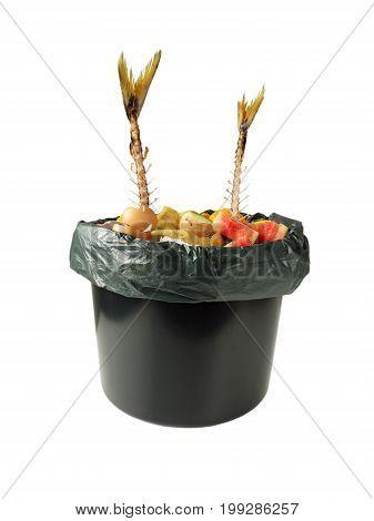 Separate garbage collection. Fish bones vegetable peelings egg shells and other organic waste in the black bucket and plastic bag isolated on white.