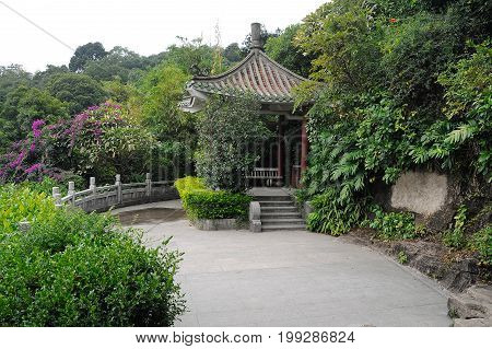 Pagoda in Chinese park surrounded by bushes and trees