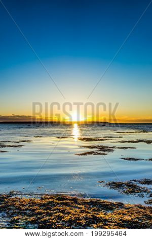 Sunset in Rimouski Quebec by Saint Lawrence river in Gaspesie region of Canada with seaweed and vertical view