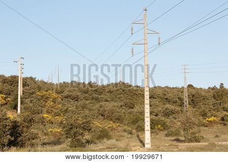 Power Lines Over Nature