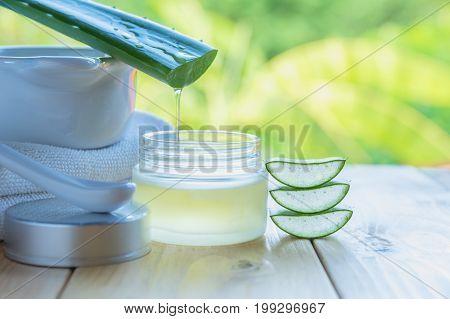 Aloe Vera essential oil on nature background. Fresh Aloe Vera leaves and glass of Aloe Vera juice.
