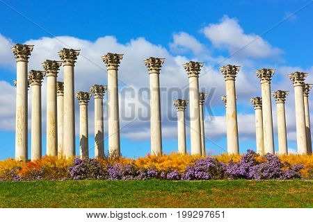 National Capitol Columns in the morning. The Capitol Columns designed as Corinthian columns in the Ellipse Meadow at the National Arboretum Washington DC.