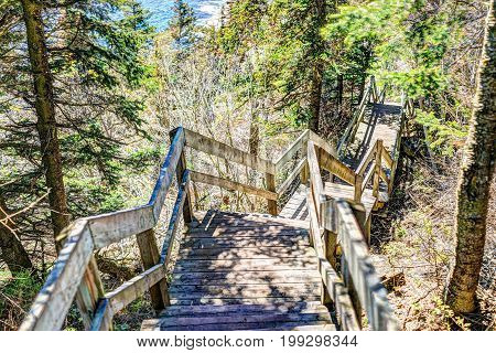 Trail hiking in Bonaventure island by Perce Quebec in Gaspe Gaspesie region with steps going down