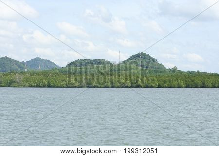 Tropical Sea And Mangrove Forest In Lanta Island