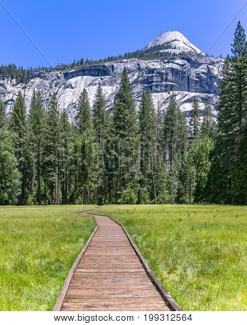 Wooden stepping path in the meadows of Yosemite. This path carries you over the meadow where there is a lot of stagnant water