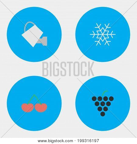 Elements Bailer, Wine, Flake Of Snow And Other Synonyms Watering, Berry And Can.  Vector Illustration Set Of Simple Horticulture Icons.