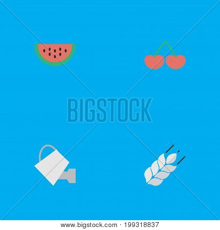 Elements Berry, Corn, Bailer And Other Synonyms Watermelon, Watering And Cherry.  Vector Illustration Set Of Simple Horticulture Icons.