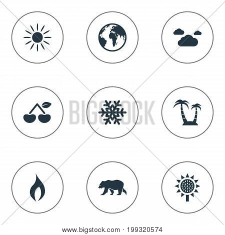 Elements Berry, Polar Bear, Sunlight And Other Synonyms Planet, Cherry And Shine.  Vector Illustration Set Of Simple Ecology Icons.
